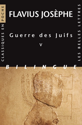 flavius_josephe_guerre_des_juifs_pelletier.jpg